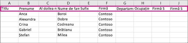 Iată cum arată fișierul .csv exemplu în Excel.