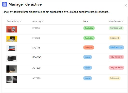 Șablon Manager de active