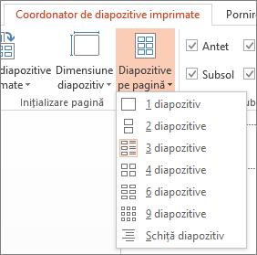 Opțiunile pentru Diapozitive pe pagină