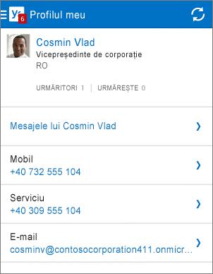 Pagina de profil din aplicația Yammer