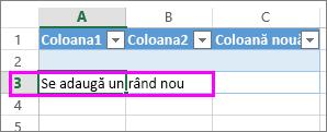 Adăugarea unui rând nou de tabel, tastând date în rândul de sub ultimul rând de tabel