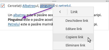 Afișează un hyperlink selectat și în curs de copiere într-o nouă locație