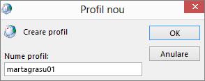 Noul profil de e-mail Outlook configurat pentru crinacodreanu