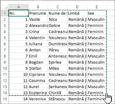 Foaie de calcul Excel cu zona evidențiată