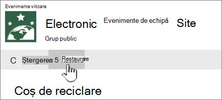 Faceți clic pe restaurare pentru a aduce înapoi elemente