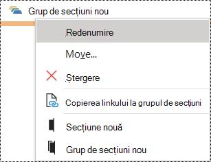 Caseta de dialog Redenumire grup de secțiuni din OneNote pentru Windows