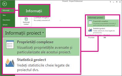 Meniul Informații proiect cu opțiunea Proprietăți complexe evidențiată