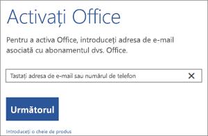 Afișează caseta de dialog Activare unde puteți să vă conectați pentru a activa Office