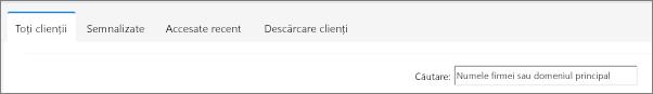Filele de pe pagina Listă clienți.