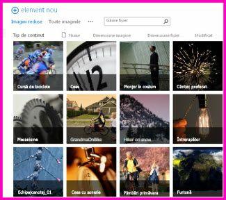 Captură de ecran a unei Biblioteci de active din SharePoint. Aceasta afișează imagini reduse ale mai multo fișiere video și imagine incluse în bibliotecă. De asemenea, afișează coloanele de metadate standard pentru activele media.