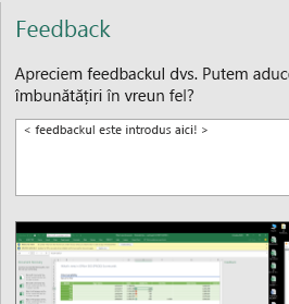 Caseta de dialog Feedback în Excel