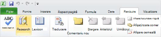 Fila revizuire a panglicii Excel