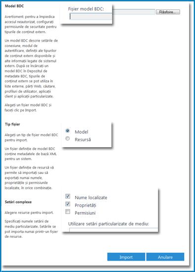 Captură de ecran a vizualizării Model BCS.