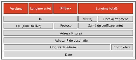 Antet IPv4
