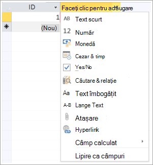 fragment de ecran cu clic pentru a adăuga verticală tip de date