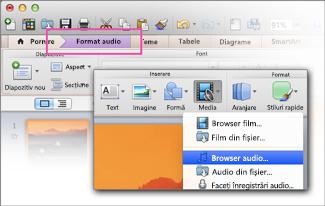 Deschidere browser audio