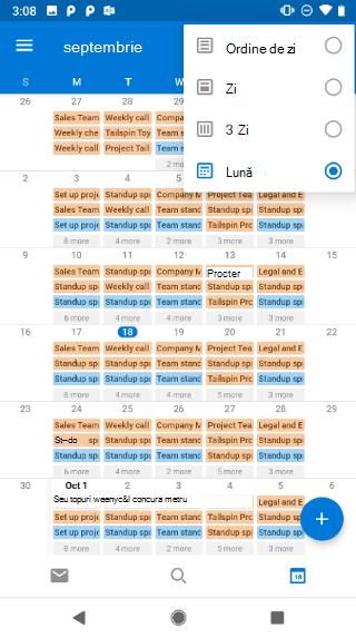 Afișează un calendar, cu un meniu vertical în colțul din dreapta sus. Are aceste opțiuni: agendă, zi, 3 zile și lună.