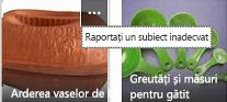 Faceți clic pe comanda Mai multe (…) în colțul din dreapta sus al oricărui element pentru a raporta conținutul neadecvat.