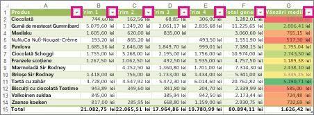 Tabel Excel afișând filtre încorporate