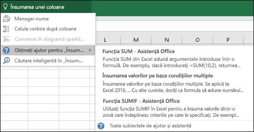 Faceți clic pe caseta Spune-mi în Excel și tastați ceea ce doriți să faceți. Spune-mi va încerca să vă ajute să efectuați acea activitate.