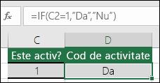 """Celula D2 conține formula =IF(C2=1,""""DA"""",""""NU"""")"""