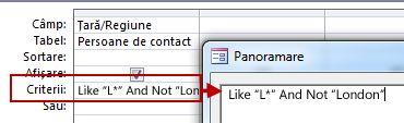 Imagine cu proiectarea interogării utilizând NOT cu AND NOT urmat de textul de exclus din căutare