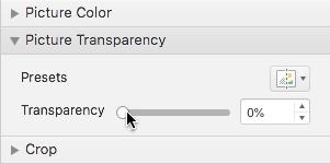Bara glisorului Transparență din panoul Formatare imagine