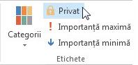 Marcarea unui element ca privat