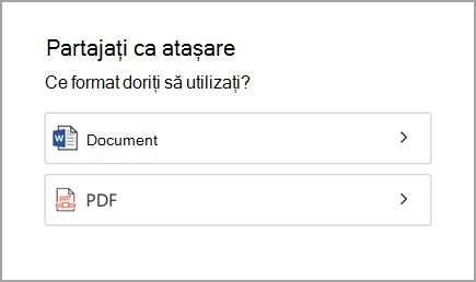 Document sau PDF