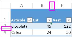 liniile duble între rânduri și coloane indică rânduri sau coloane ascunse