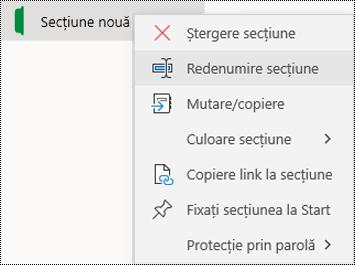 Captură de ecran a meniului contextual pentru redenumirea unei file de secțiune în OneNote pentru Windows 10.