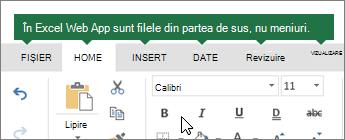 Pornire, Inserare, date, vizualizare File în Excel online