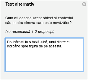Panoul de Text alternativ pentru a adăuga text alternativ la o imagine în Outlook