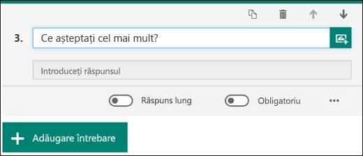 O întrebare Text afișată pe un formular