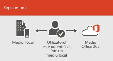 Cu un sign-on unic, același cont este disponibil atât în mediul local, cât și în mediile online