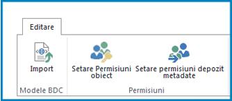 Captură de ecran a panglicii Editare în Setări Business Connectivity, afișând butonul și setările de permisiuni ale modelului BDC.