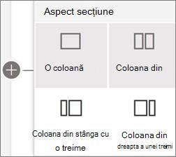 Aspecte de secțiune