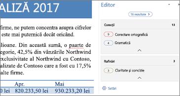 Panoul Editor afișând problemele de verificare care vor fi corectate într-un document Word deschis