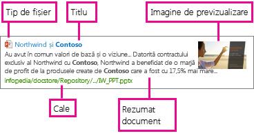 Șablonul de afișare a elementelor preia informații din proprietățile gestionate