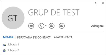 Captură de ecran a filei Membri din cartea de vizită Outlook a grupului denumit Grup de test. Subgrupul 1 și Subgrupul 2 sunt afișate ca membri.