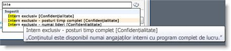 Textul explicativ îi ajută pe utilizatori să selecteze termenul corect.