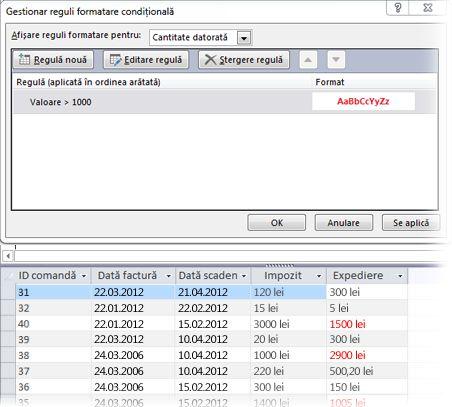 Regulă de formatare condiționată alături de o vizualizare a formularului în vizualizarea Aspect cu formatul aplicat.