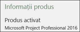 Informații despre produs - Project Professional 2016