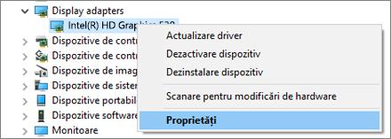 Accesați Managerul de dispozitive Windows pentru a gestiona driverele pentru placa video.