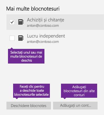 Captură de ecran cu fereastra Mai multe blocnotesuri din OneNote