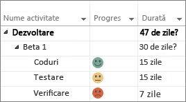 Indicatori particularizați de progres într-o diagramă Gantt