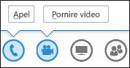 Captură de ecran cu butoanele audio și cameră web