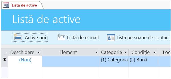 Formularul Listă de active din șablonul de bază de date Active Access