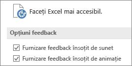 Vizualizare parțială a setărilor de accesibilitate din Excel
