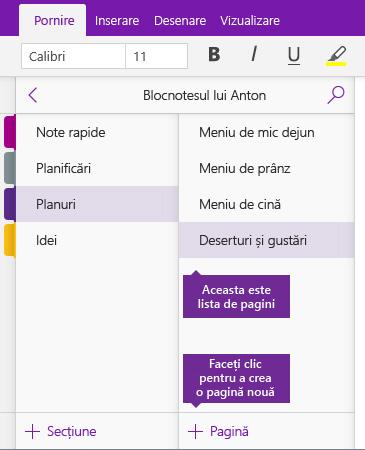 Captură de ecran cu butonul Adăugare pagină din OneNote